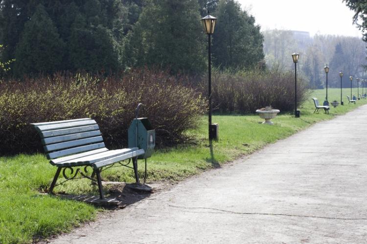 dreamstime_s_114805737 park bench © Liubovi Samoilova.jpg